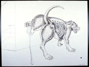 Skinny dog 1976