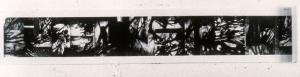 "Diazo roll  1997  16"" x 9'"