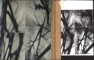 photocopies on cork 1996